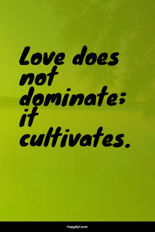 cultivating new love quotes