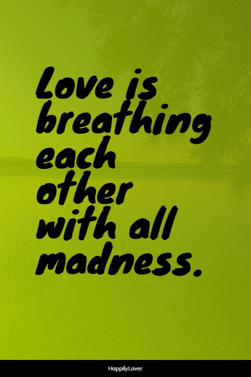 cute new love quotes