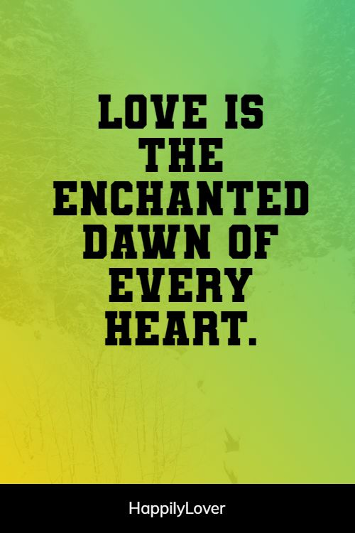 enchanted i love you quotes