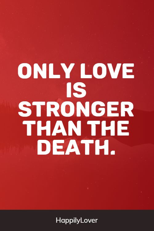 endless love quotes from life