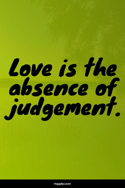 beautiful new love quotes